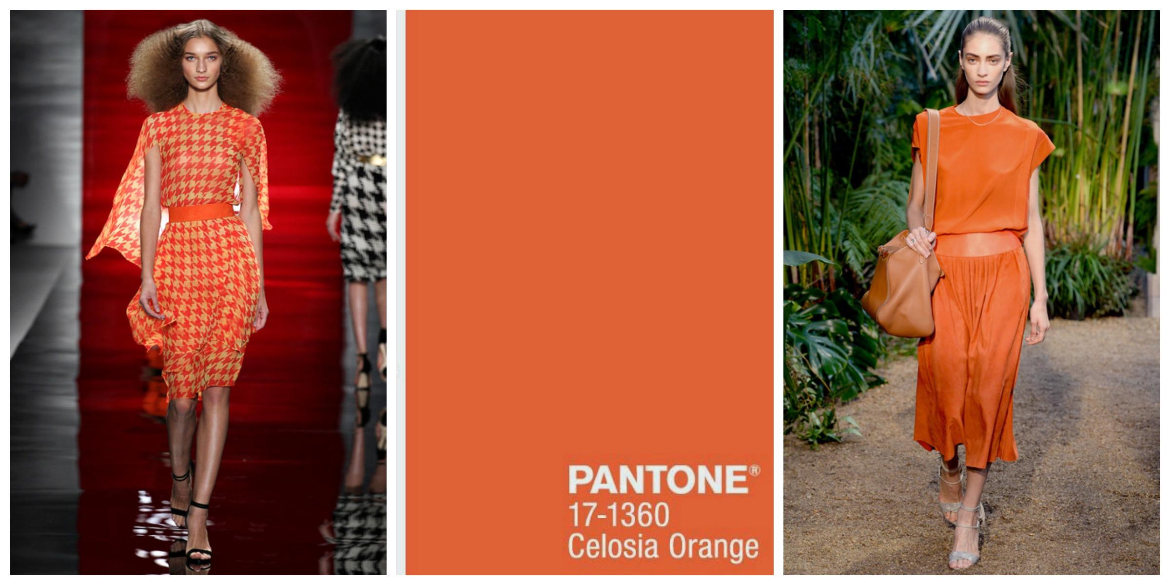 tendencias celosia orange perlas y coco. Black Bedroom Furniture Sets. Home Design Ideas